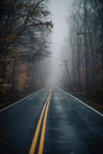 Rural Road With Moody Fog