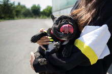 Anonymous Girl Holding Her Dog