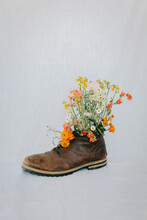 Spring Flowers In A Boot Vase