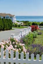 New England Summer Landscape