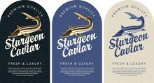 Set Of Labels For Black Sturge...