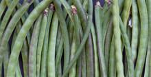 Close Up Of Green Beans Vegeta...