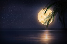 Fantasy Night. Palm Leaves And...