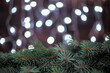 Christmas composition fir branches on a blurry background with garland lights