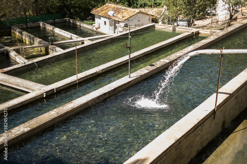 Fotomural Rustic outdoor pools of fish farm in Cazorla