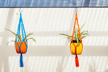 Hanging Colourful Macrame With Potted Plants
