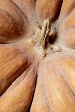 Closeup Of An Orange Pumpkin