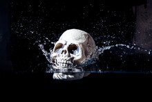 Human Plastic Skull Falling In Water Isolated On Black Background. Halloween Image.