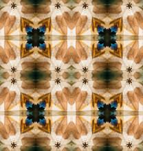 Geometrical Pattern Created Inside Old Kaleidoscope