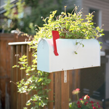 Classic Mailbox On A Post Of A Porch. Red Flag Up.
