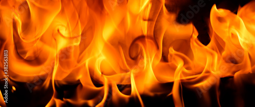 Fotomural Red blaze Fire flame on a black background