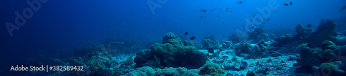 under water ocean / landscape underwater world, scene blue idyll nature Fotobehang