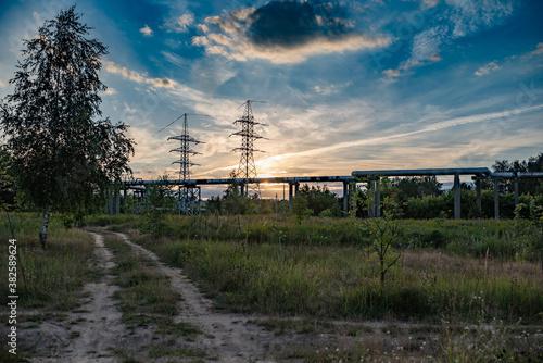 Fotografie, Obraz Power line at sunset near the forest.