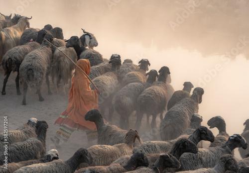 Obraz na płótnie shepherds from Baluchistan , Pakistan