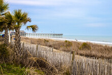 Myrtle Beach Oceanfront. Wide Sandy Beach With Sea Oats, Palmetto Trees And Fishing Pier At The Horizon On The Golden Mile In South Carolina.