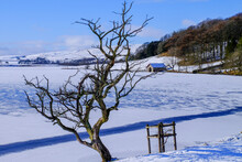 Malham Tarn, Winter