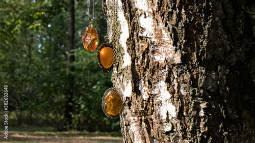 Amazing old pendants with orange Baltic amber sparkling in the sun hang on a birch tree against the background of a summer birch forest. - 382682640