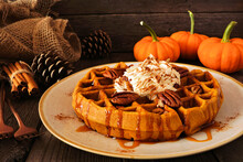Pumpkin Spice Waffle With Whipped Topping, Caramel And Pecans. Side View Table Scene With A Dark Wood Background. Fall Breakfast Concept.