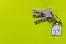 Macro View Of Two Silver Keys With House Figure On The Light Green Background