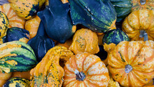 Selection Of Gourds And Marrow...