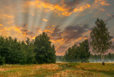 Fototapeta Natura - Sunrise. Morning. Countryside. A meadow surrounded by forest.