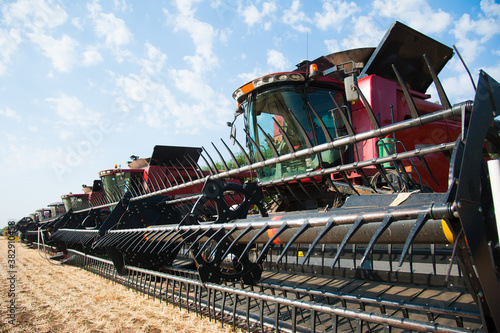 Fototapeta Combine harvesters ready for harvest obraz