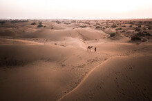 Aerial View Of Person Walking A Camel Across Great Indian Desert At Sunset