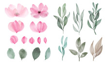 Set Of Watercolor Flower And L...