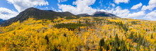 Aerial Drone Panorama Of Yellow Aspen Trees In Colorado During Fall Autumn Season On Bright Sunny Day With Beautiful Blue Sky And Mountains In Park