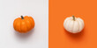 Creative halloween flat lay two pumpkin, white and orange on colored background with copy space.