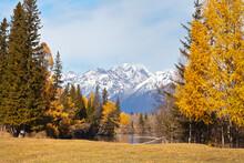 Autumn Landscape With Beautifu...