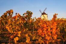 Historic Windmill In Retz, Low...