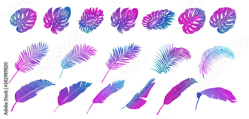 Neon Tropic Banana, Monstera, Palm Leaves Set, Vector Tropical Summer Leaf, vibrant purple template
