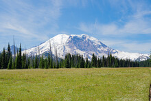 Mount Rainier In The Summer