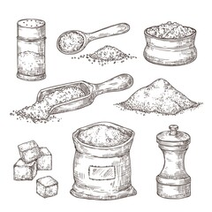 Fototapeta Boks Salt sketch. Hand draw spice, vintage bowl spoon with sea salt powder. Food ingredients to cook, isolated pepper shaker vector illustration. Salty and pepper sketch, shaker container