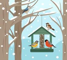 Winter Feeder. Snow Woodland, ...
