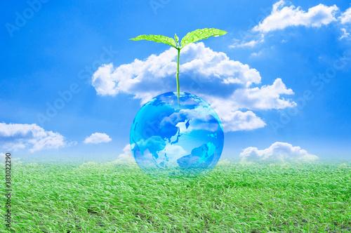 Vászonkép 地球と双葉