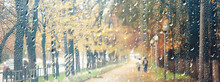 Bad Weather Rain Wind, Autumn ...