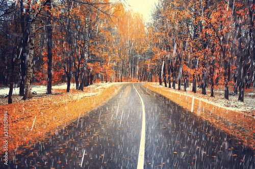 Fotografia, Obraz bad weather rain wind, autumn concept background