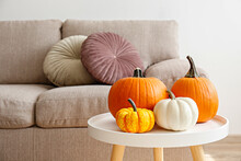 Bunch Of Classic Orange, Hooligan And Baby Boo Pumpkins On Marble Textured Table As A Symbol Of Autumnal Holidays With A Lot Of Copy Space For Text. Living Room Interior Background, Close Up.