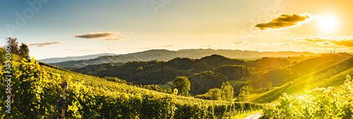 Sunset panorama of wine street on Slovenia, Austria border in Styria Poster Mural XXL