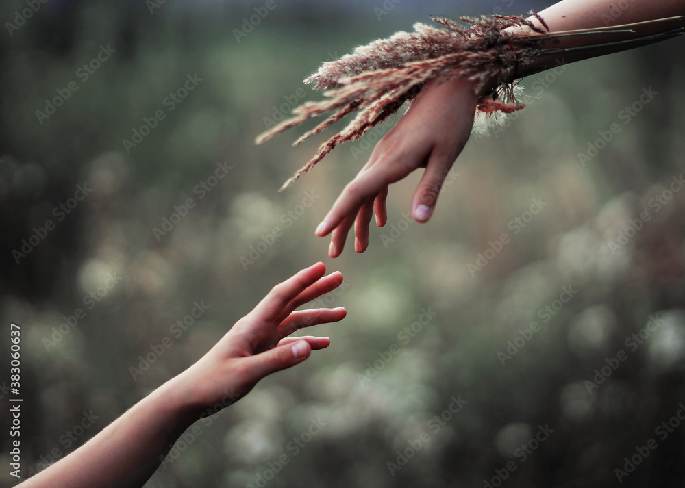 Fototapeta hands of the persons