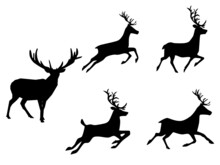 Set Of Silhouette Deer Isolate...