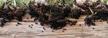 European Black Elderberry On A Wooden Background. (Sambucus Nigra).