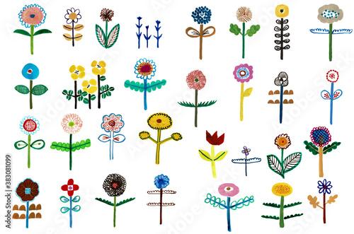 Photo たくさんの花