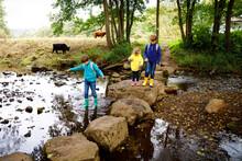 Three Little Children Hiking I...