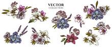Flower Bouquet Of Colored Anemone, Lavender, Rosemary Everlasting, Phalaenopsis, Lily, Iris