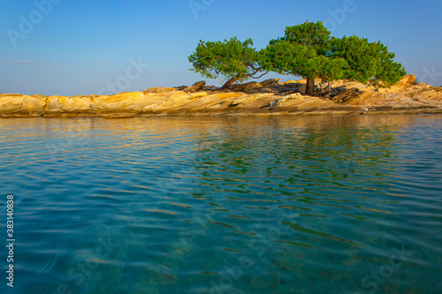 Fototapeta small island lonely tree south landscape photography in summer clear weather tim