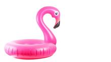 Flamingo Print. Pink Pool Infl...