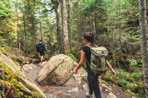 Hikers walking on forest trail with camping backpacks Canvas